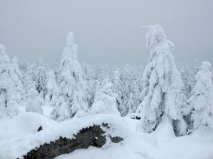 Winterlauf im Fichtelgebirge